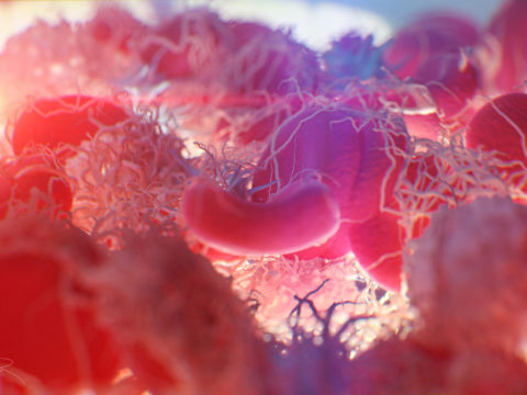 """Blood clotting"" by Alexey Kashpersky, Radius Digital Science is licensed under CC BY-NC 4.0"